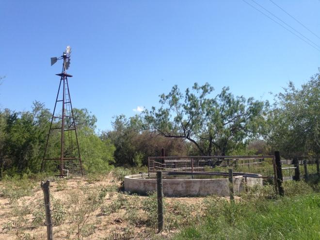 Encino Windmill