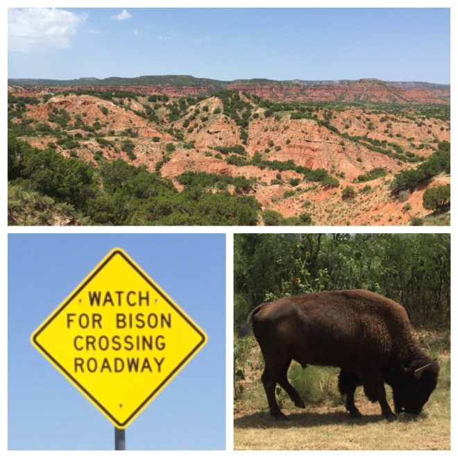 Caprock Canyons Trio