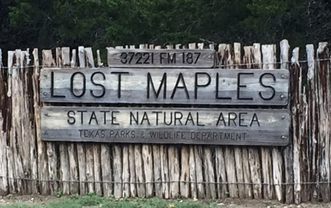 Lost Maples Sign