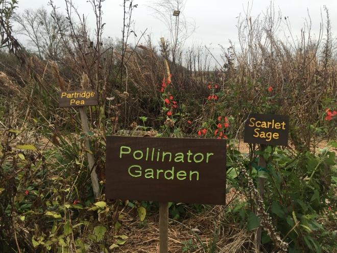 Seabourne Pollinator Sign