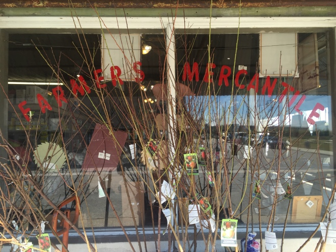 Farmers Mercantile Window