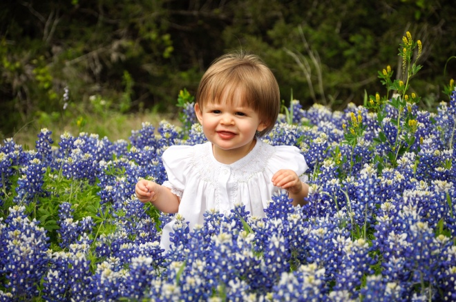 BG in Bluebonnets
