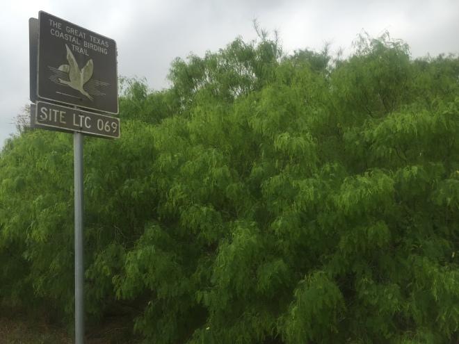 Bentsen Birding Sign