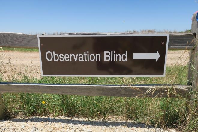 Attwater Observation Blind