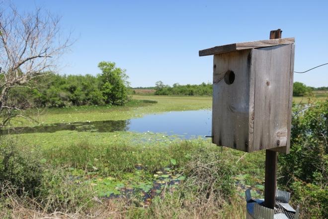 Attwater Birdhouse