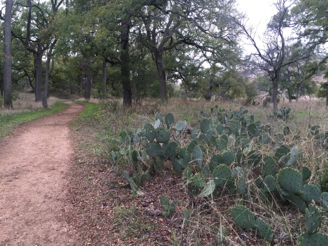 Prickly Pear Path