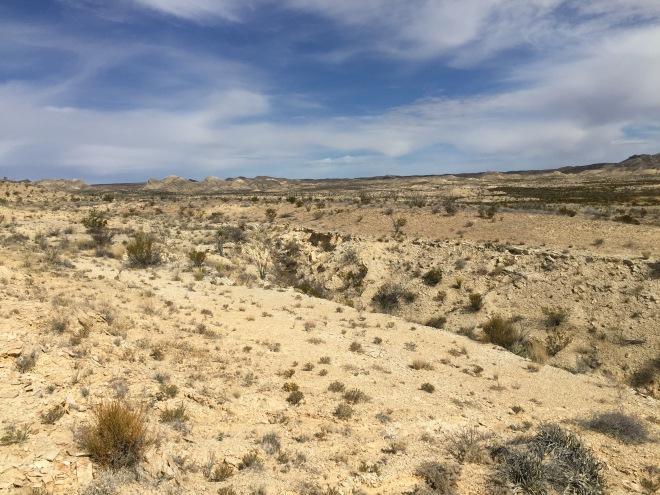 chihuahuan-view