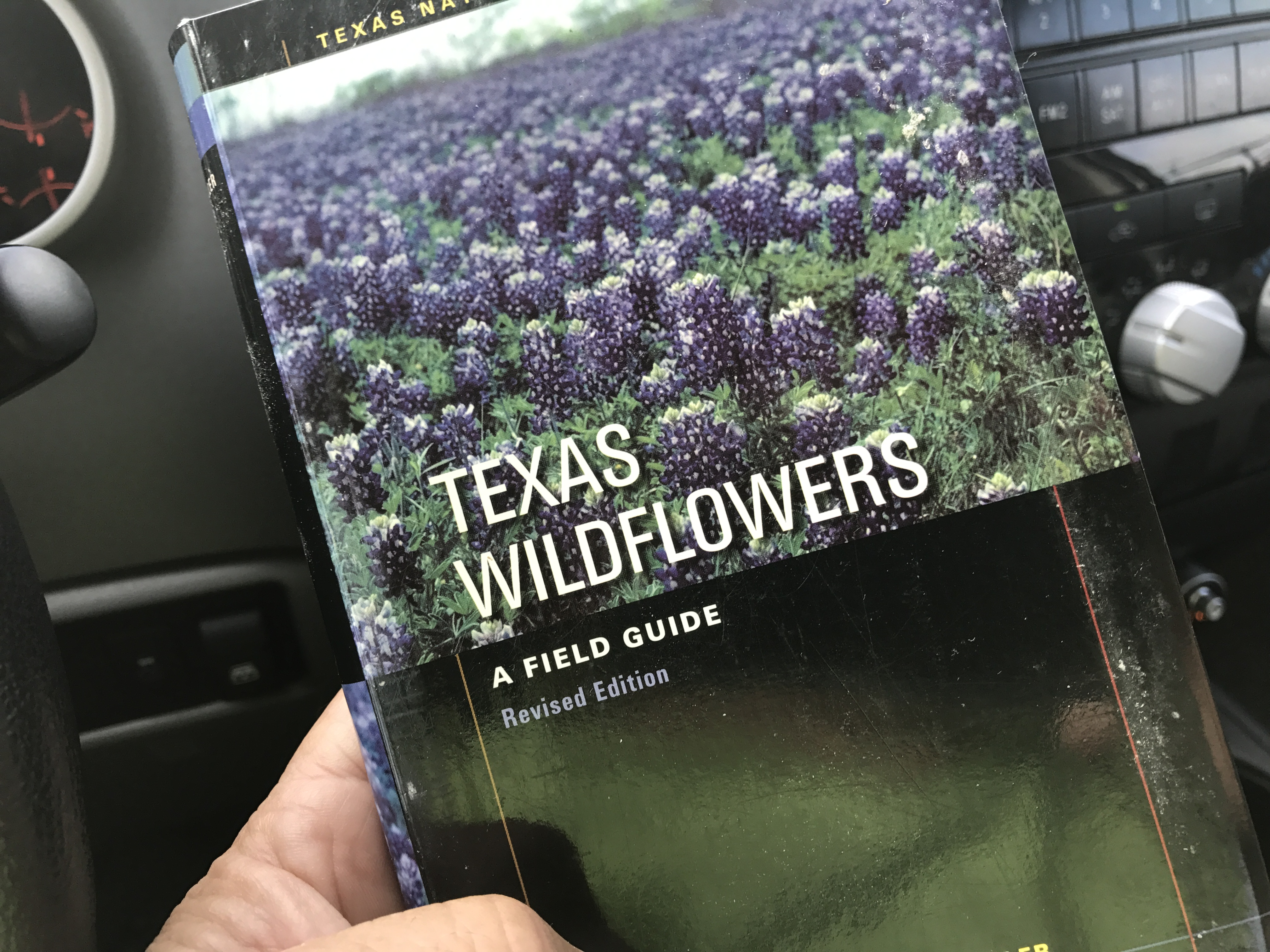 the passion flower – explore texas